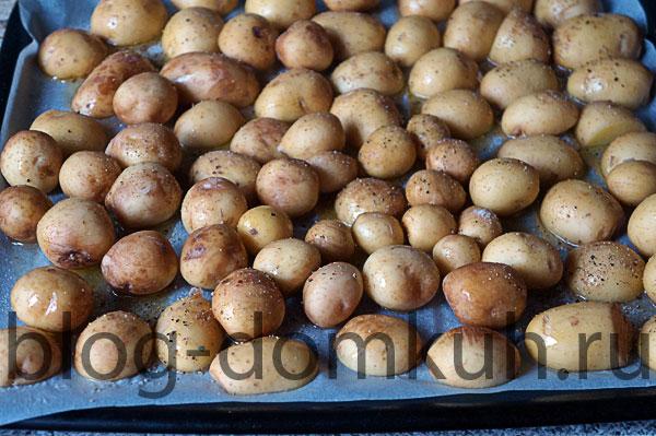 картошка1