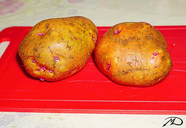 картошка02