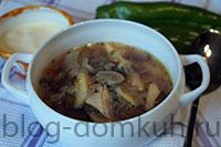 суп-щавель-грибы-мини