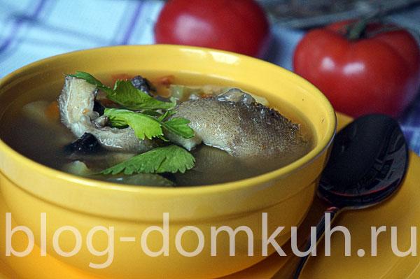суп-рыба-овощи-осн