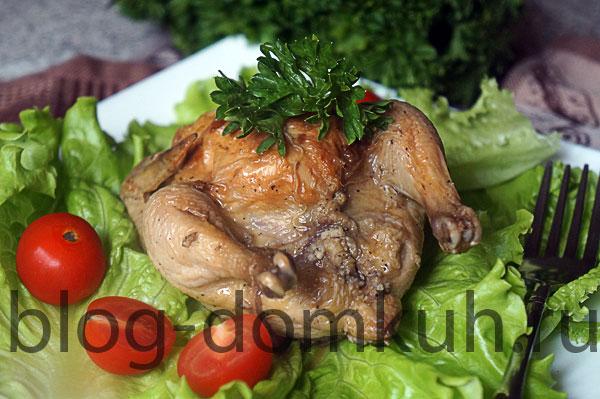 цыплята-осн