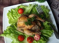 цыплята-мини